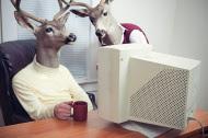 stock-photo-11142062-deer-head-men-working-at-office